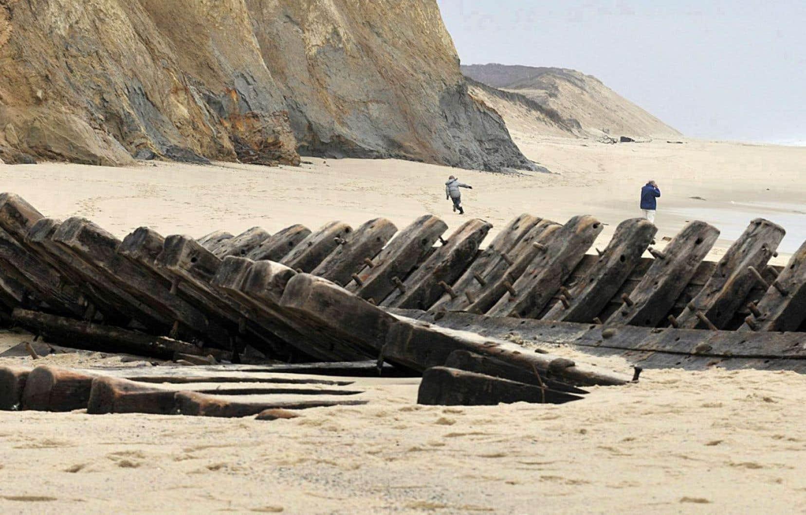 Douze histoires de plage et une noyade. Le titre du recueil ne laisse présager qu'une seule mort. Elle hante pourtant le sable chaud de Wellfleet, Cape Cod, sur lequel chacun des treize auteurs dépose sa serviette.