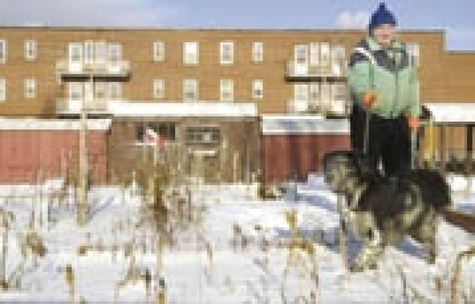 Ed et son chien Duke se promènent devant les bâtiments inhabités de Benny Farm. Une partie du projet sera habitable à la fin de 2003.