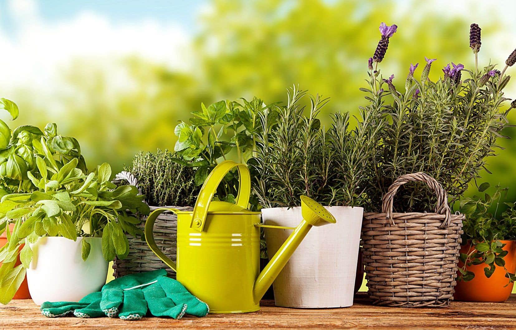 Un «home» pour les uns, un chez-soi pour les autres, mais toujours un refuge et un jardin intérieur où cultiver un peu d'intimité en se donnant beaucoup de temps.<br />