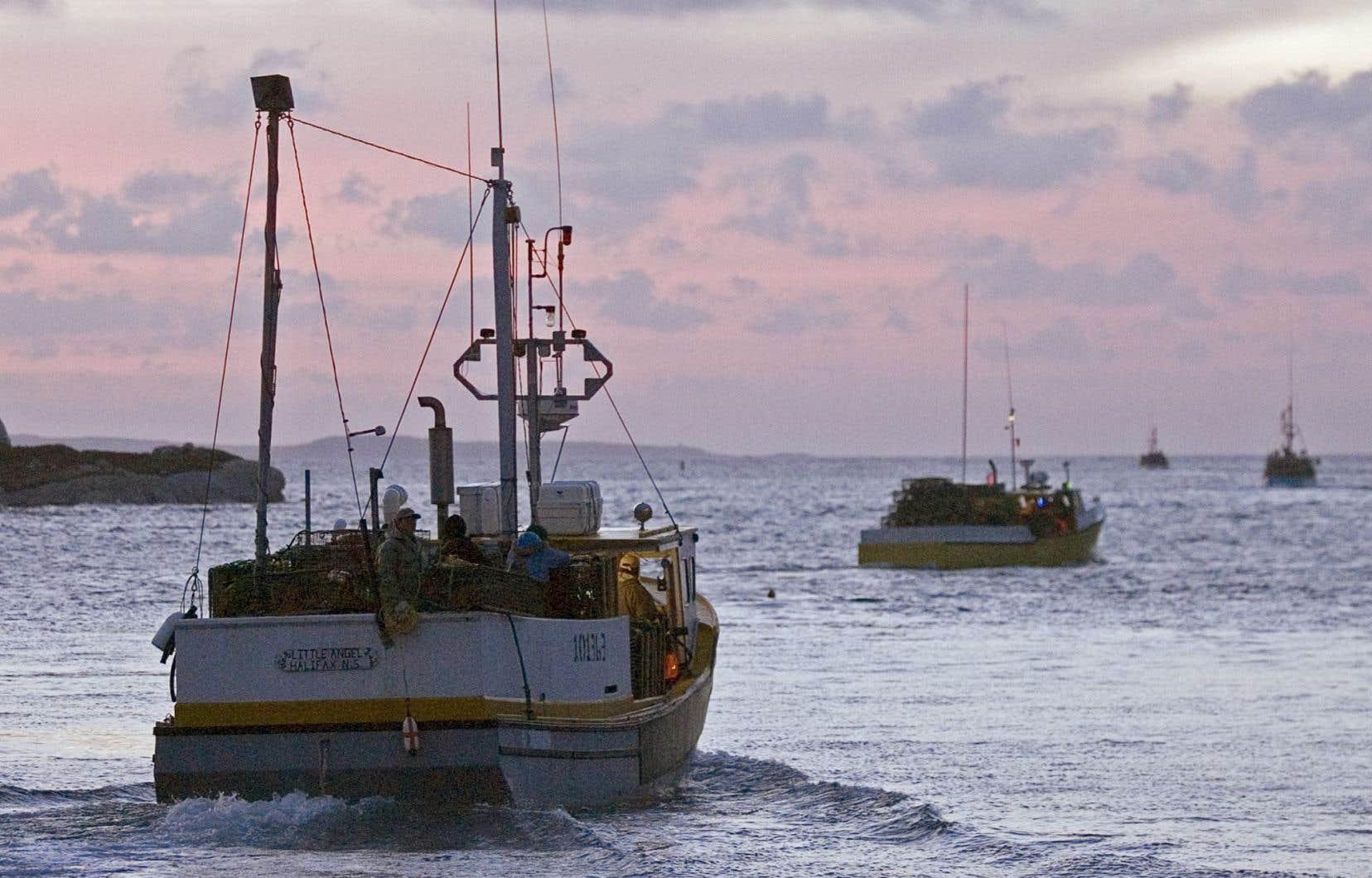 Dans une lettre aux ministres fédéraux des Ressources naturelles, de l'Environnement et des Pêches, une vingtaine de communautés et d'associations de pêcheurs vivant et travaillant sur les côtes du golfe demandent au gouvernement de prendre le temps de bien mesurer les risques avant d'y entreprendre des travaux d'exploration.