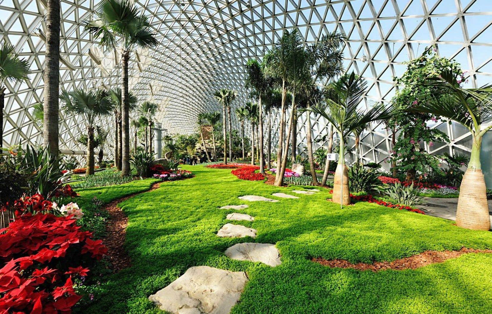 Les trois serres surprennent par leur design futuriste et leur grandeur.