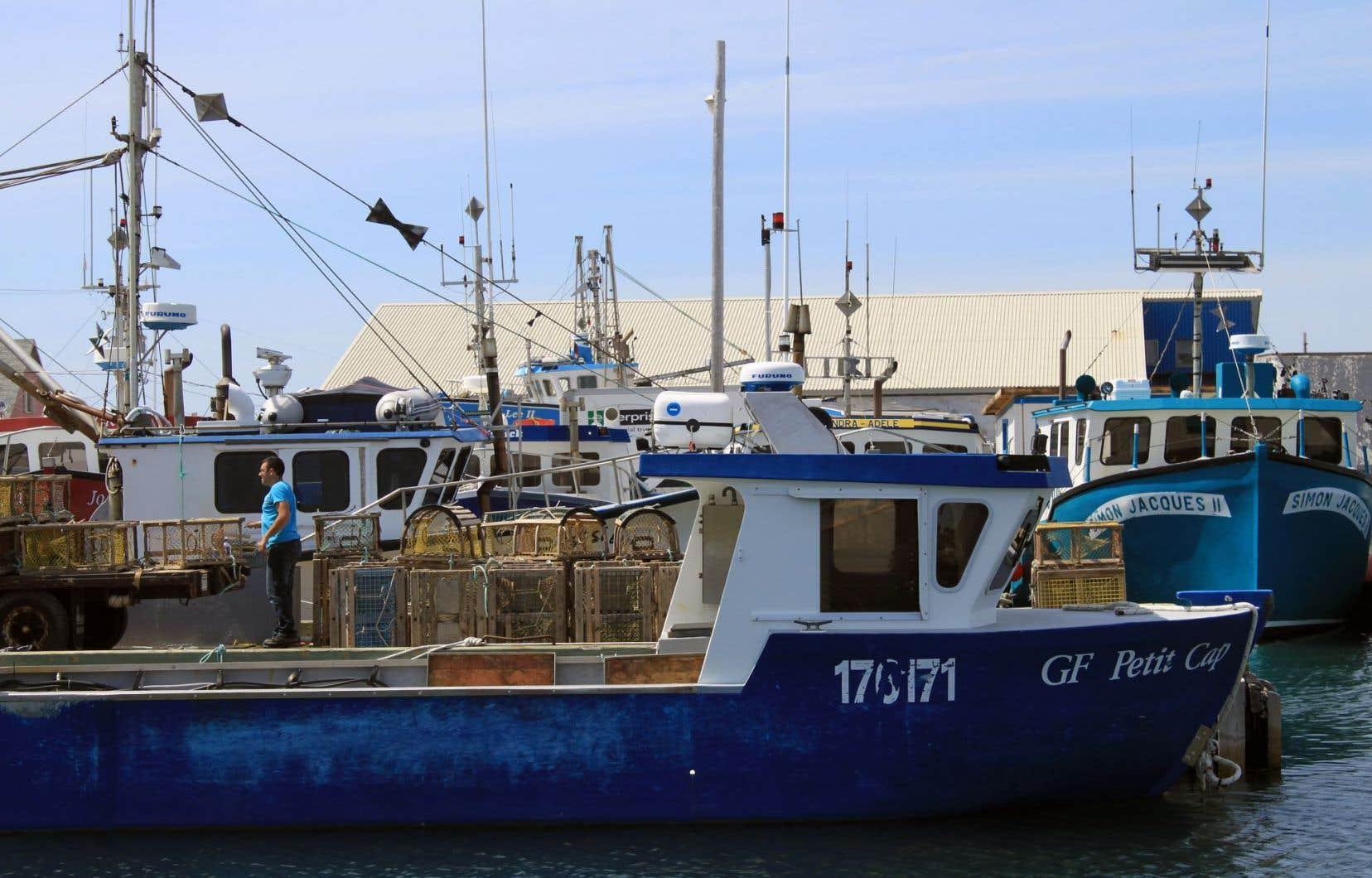 Un déversement dans le secteur d'Old Harry menacerait tout l'est du golfe du Saint-Laurent, mais aussi les îles de la Madeleine.