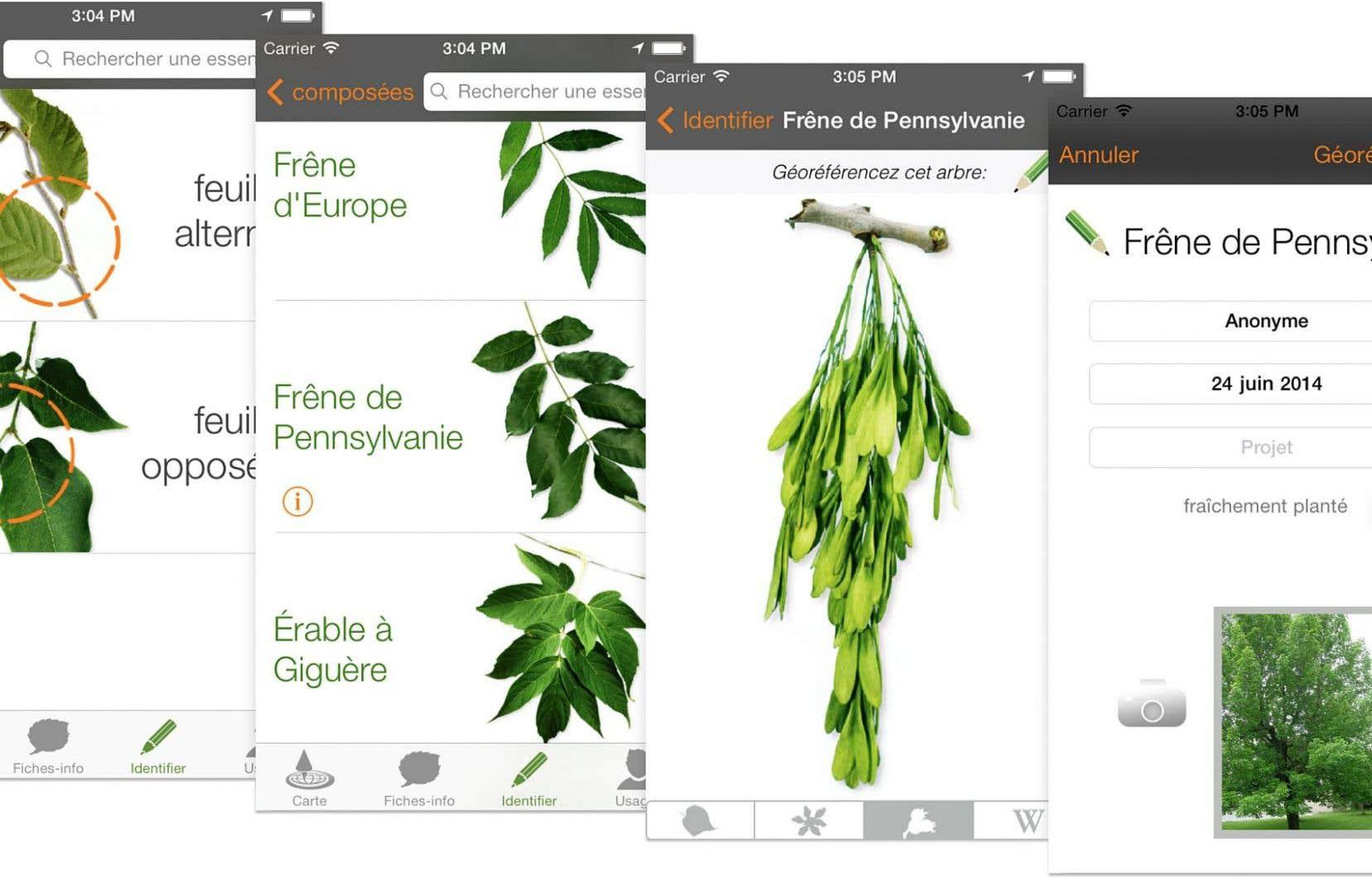 Des applications utiles pour identifier les v g taux le - Comment trouver le nom d une plante ...