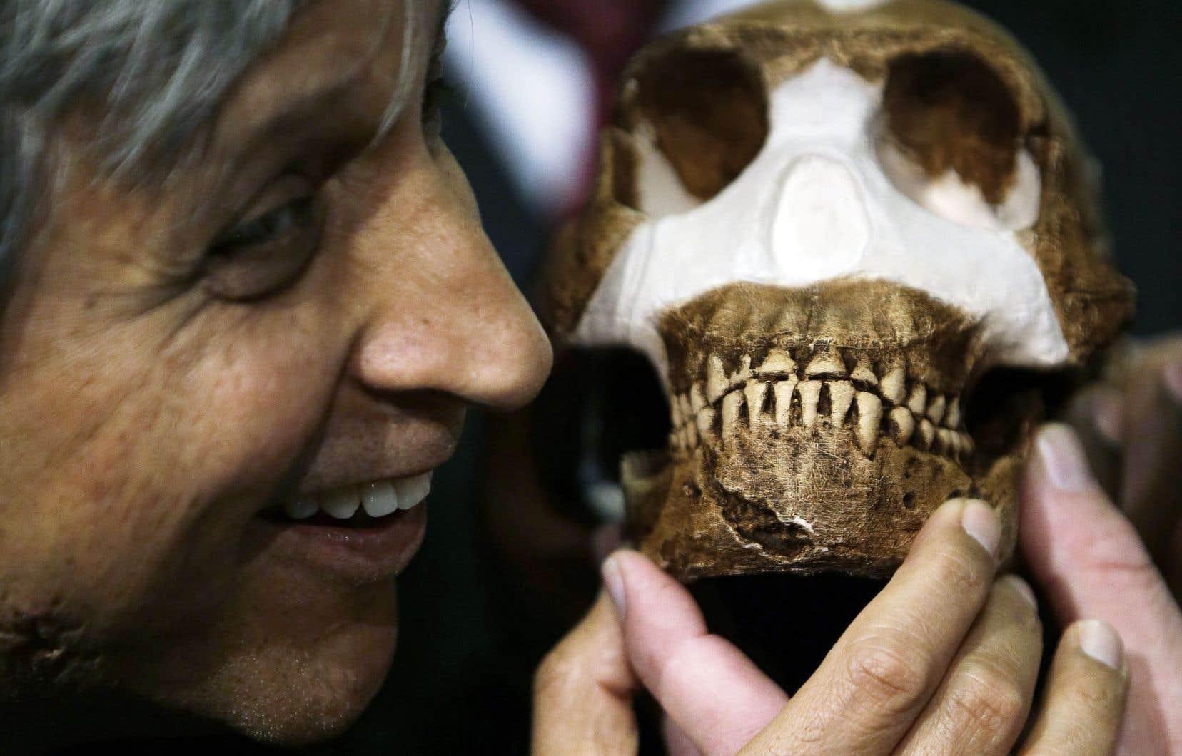 Homo Naledi datant vitesse allemande datant