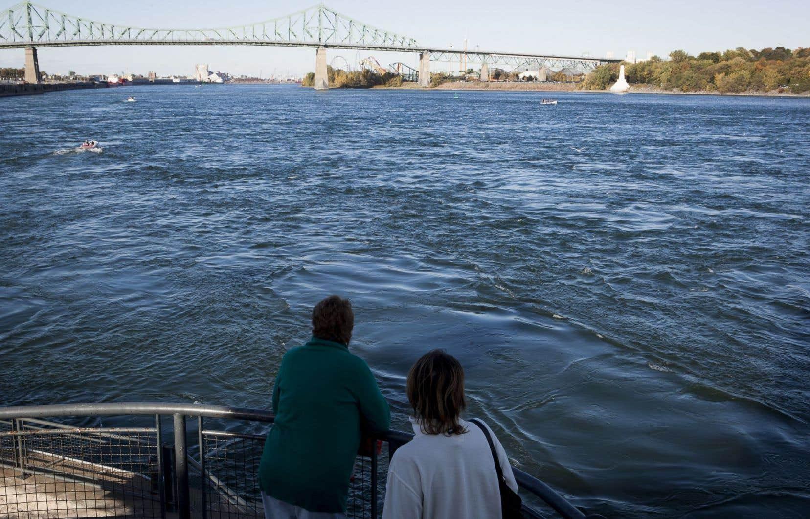 Les Montréalais ont eu droit cette semaine à un cours accéléré sur le fonctionnement du réseau d'égouts.