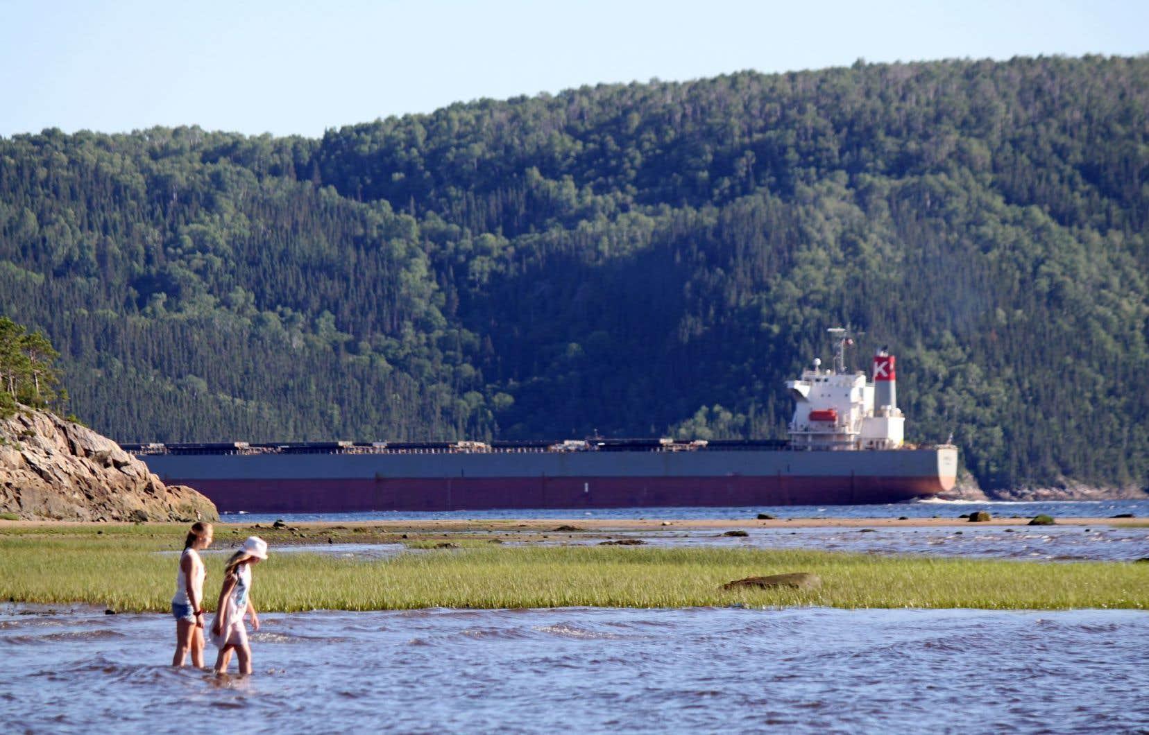 Les navires qui chargeraient le minerai, à raison d'un tous les cinq jours, auraient une capacité de 40000 tonnes. En naviguant sur le Saguenay, ils traverseraient le seul parc marin de la province.