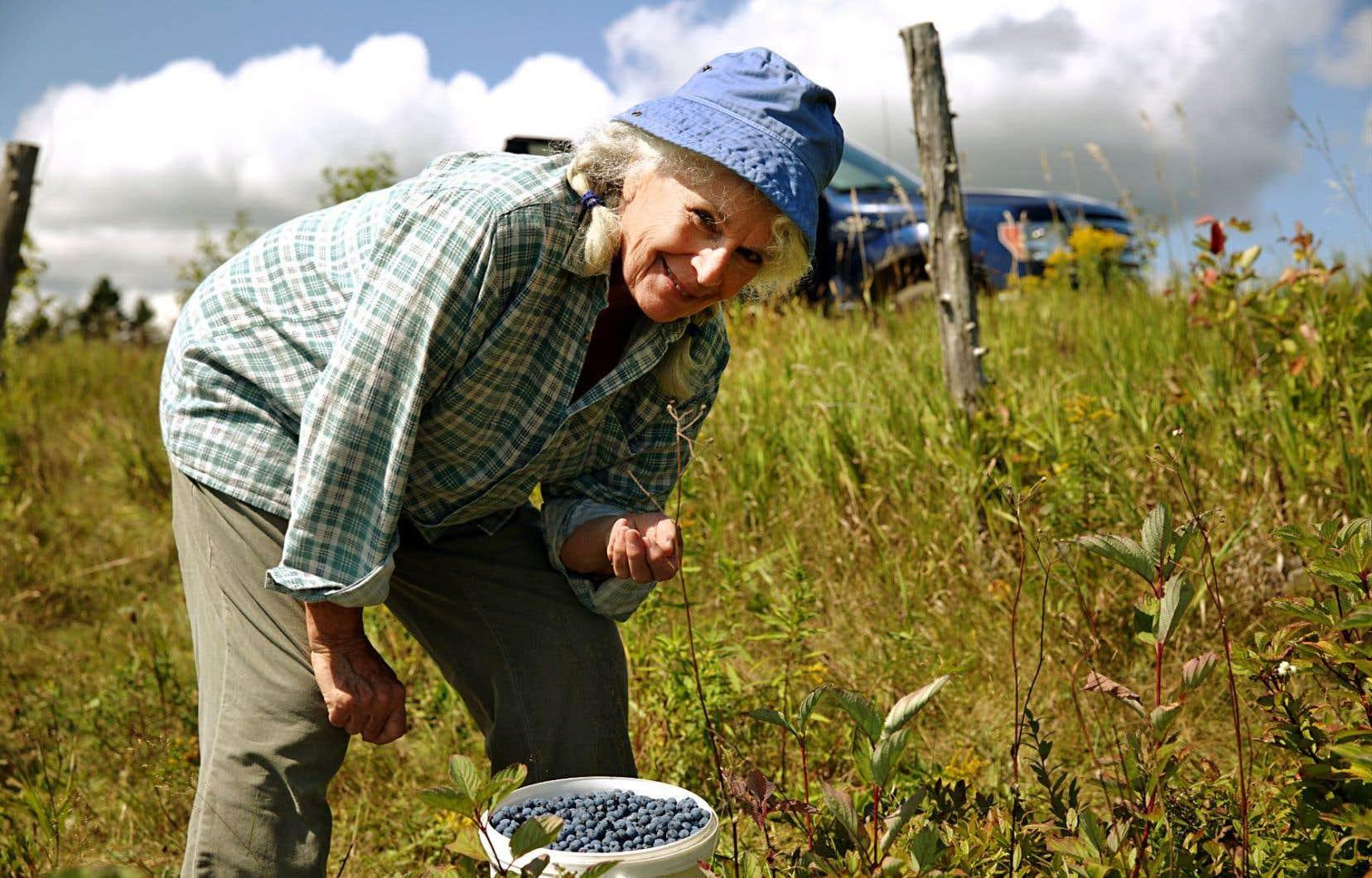 Le court métrage «La guerre des bleuets» met en vedette Patricia Nolin.