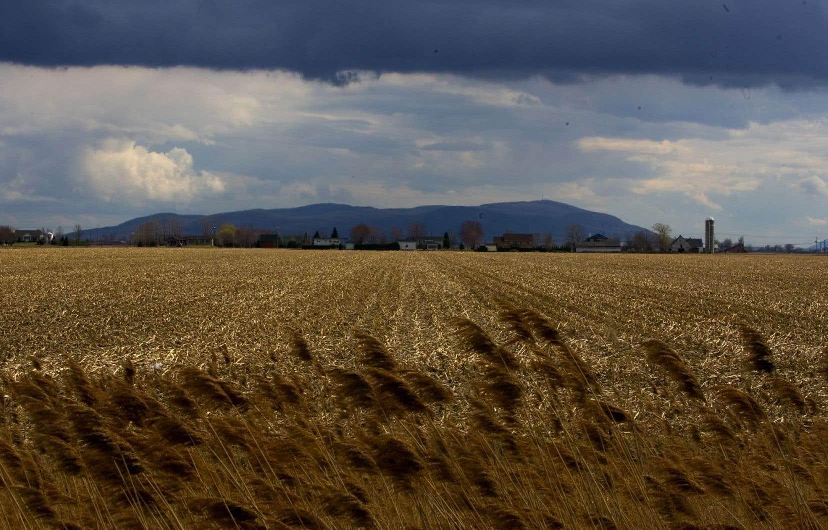 Le secteur agricole sera de plus en plus affecté par les changements climatiques, qui entraîneront dans leur sillage toute une série d'impacts négatifs significatifs.