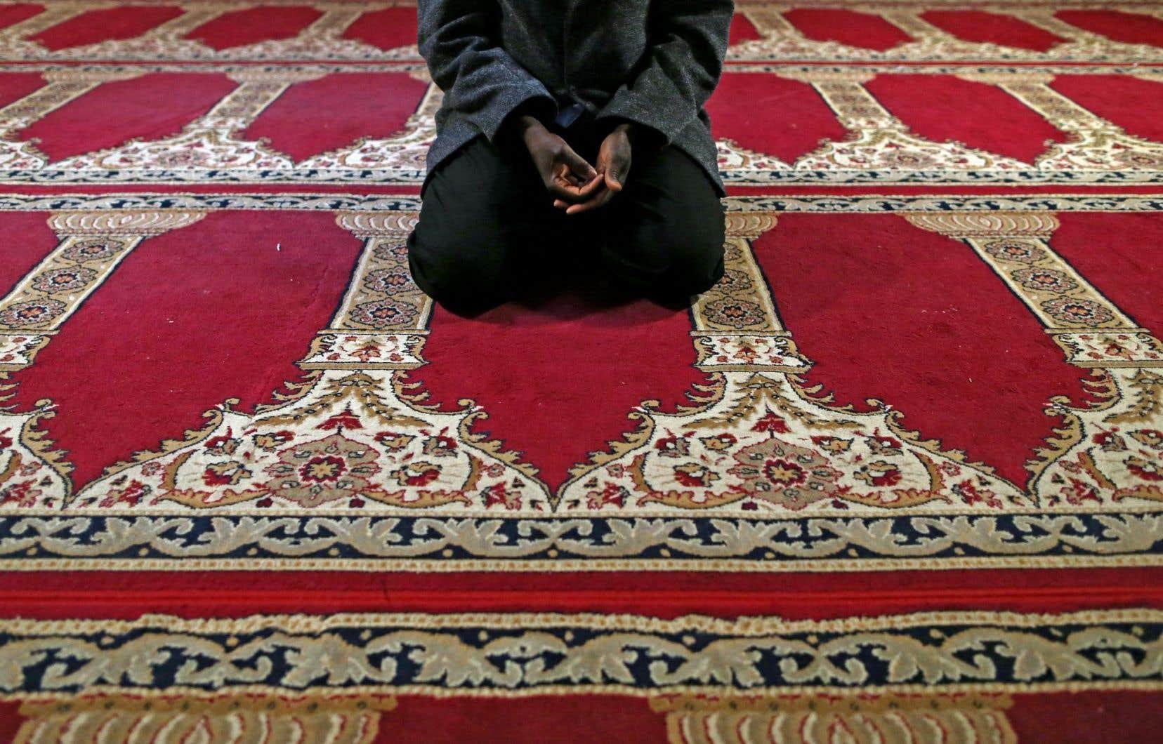 Le plan Abdennour Bidar propose notamment des états généraux sur l'islam.