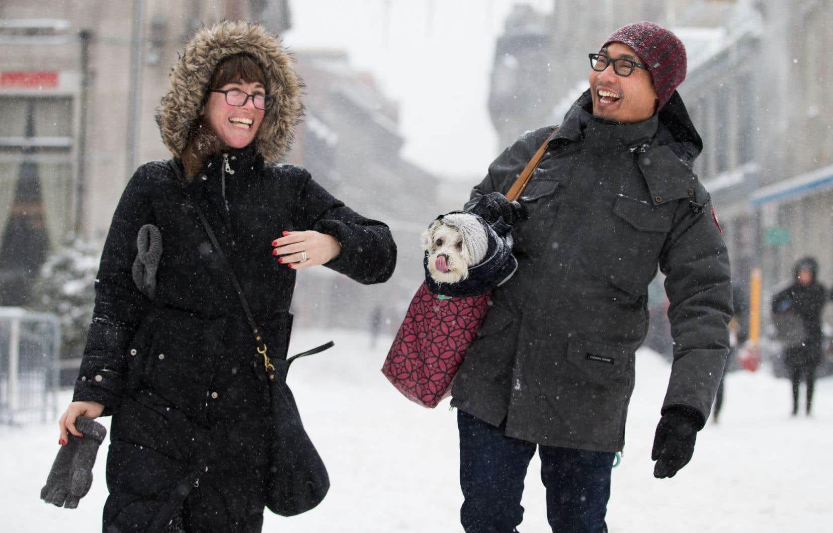 Un couple de Brooklyn et leur chien en vacances à Montréal