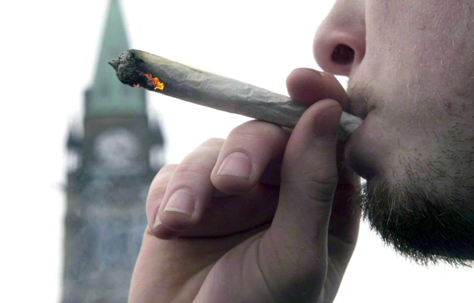 «On est dans une société où on accuse les gens de possession et consommation de marijuana alors que plus que la moitié de la population en a déjà consommé. Ce sont des lois qui sont désuètes et ridicules», estime le juge Pierre Chevalier.