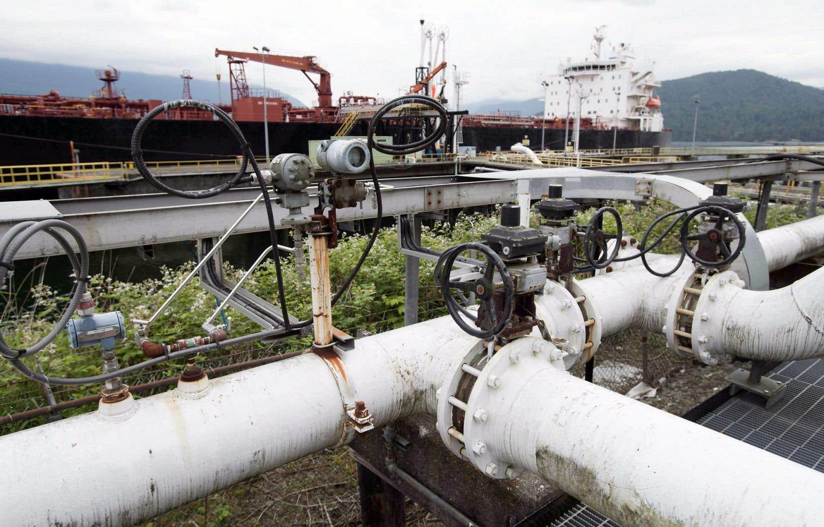 Le projet d'expansion du réseau de pipelines Trans Mountain signifierait une augmentation importante du trafic de pétroliers dans le secteur de Vancouver.