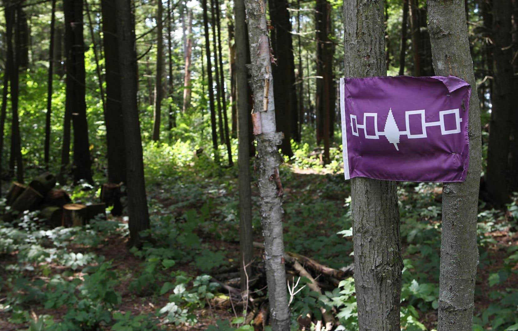 Le Caucus iroquois a fait connaître jeudi son opposition ferme au projet de TransCanada, <em>«au nom de la protection de nos territoires, de nos peuples et de nos cultures contre les risques majeurs que pose ce projet dangereux».</em>