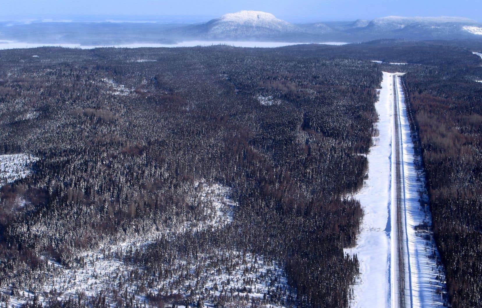 Des chercheurs ont établi qu'une «ligne» sépare le territoire vierge du Nord québécois de celui pollué du sud.