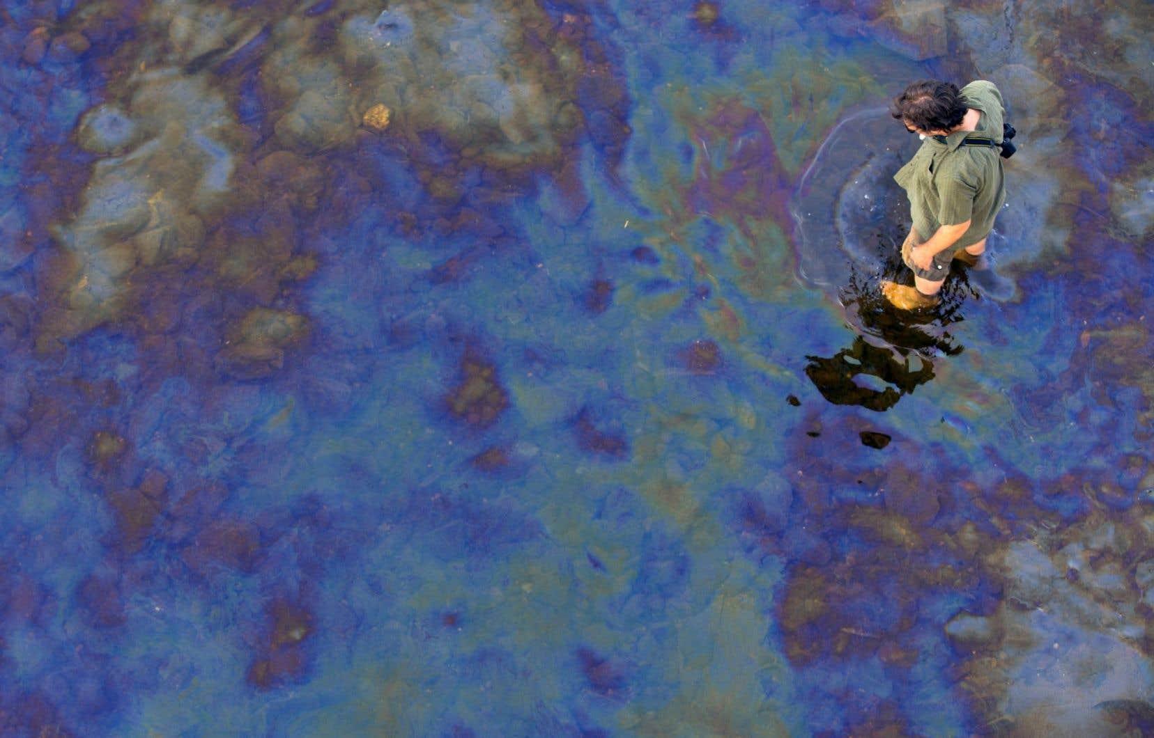 Le pétrole déversé dans la rivière Chaudière était bien visible à la surface de l'eau dans les jours qui ont suivi l'accident ferroviaire de juillet2013, à Lac-Mégantic.