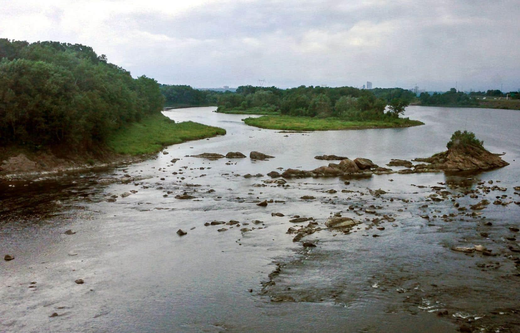 La rivière Chaudière a été contaminée à la suite du déversement de pétrole survenu à Lac-Mégantic en 2013.