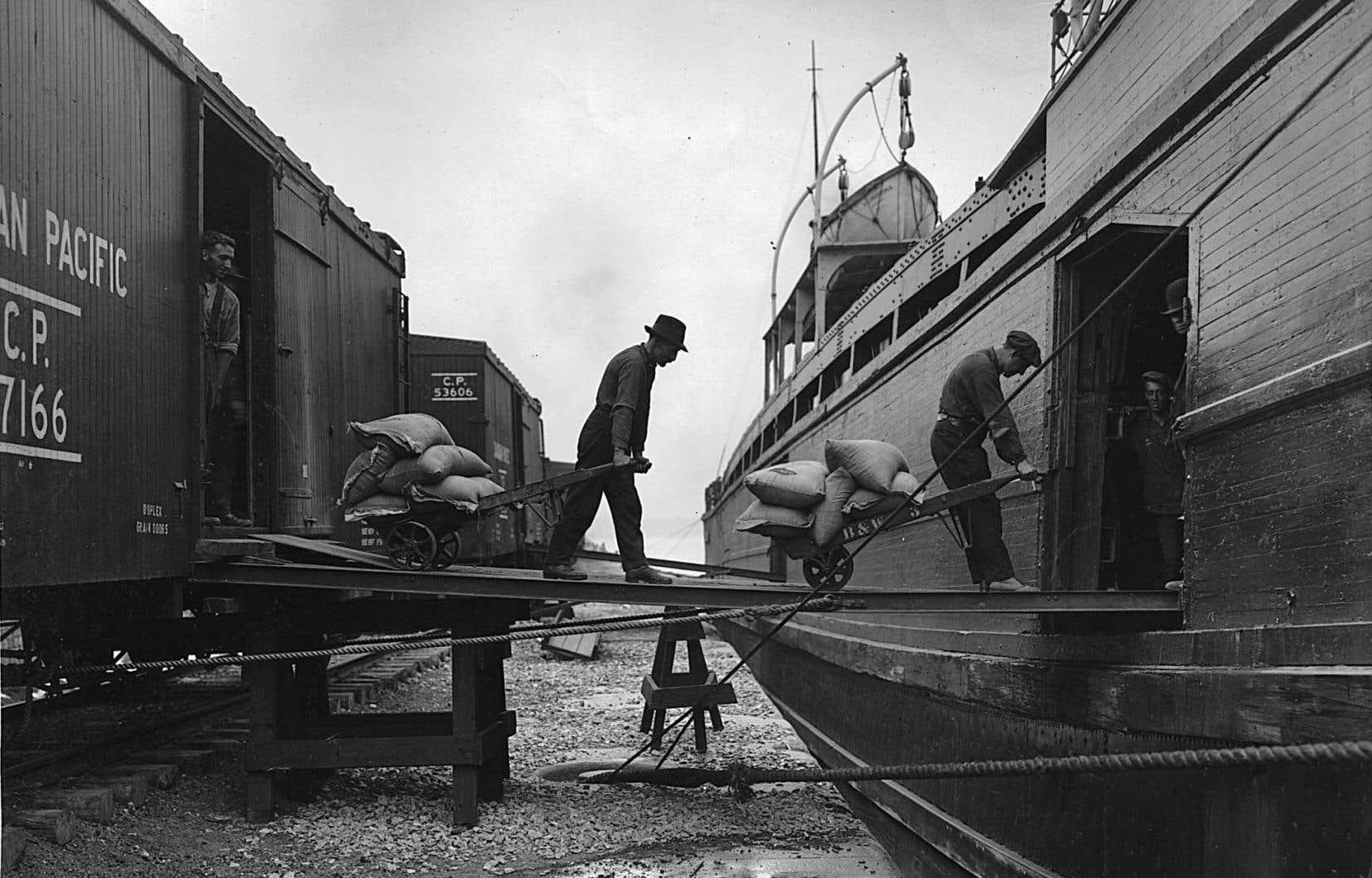 Chargement de sacs de grains au port de Montréal, vers 1920