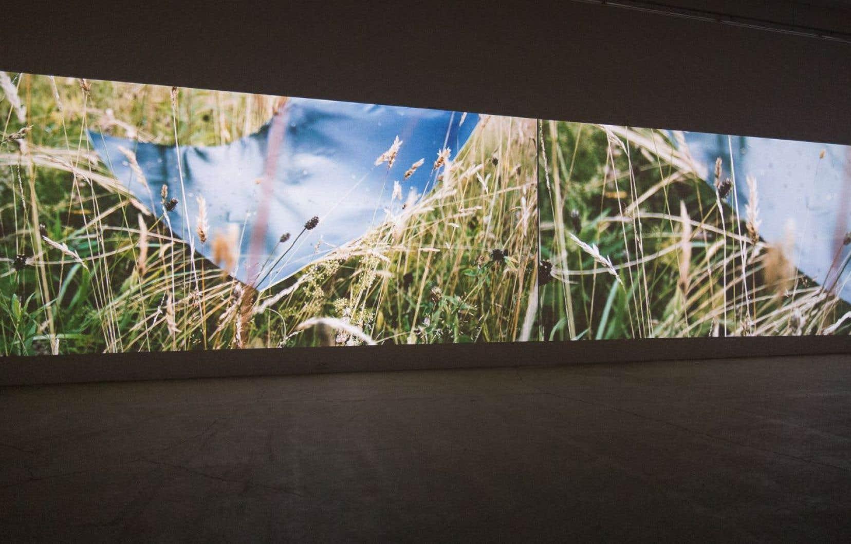 Les oeuvres sont deux installations vidéo majestueusement déployées dans les salles de la galerie totalement plongées dans la pénombre.