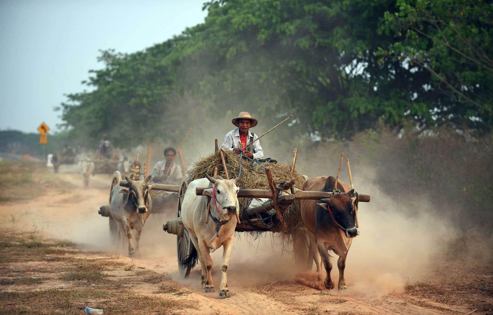 Les réformes seront limitées au Myanmar, malgré les projets du parti d'Aung San Suu Kyi.