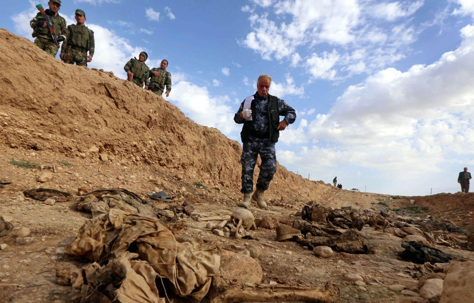 Un membre des forces kurdes inspecte les restes de yézidis exécutés par le groupe État islamique.