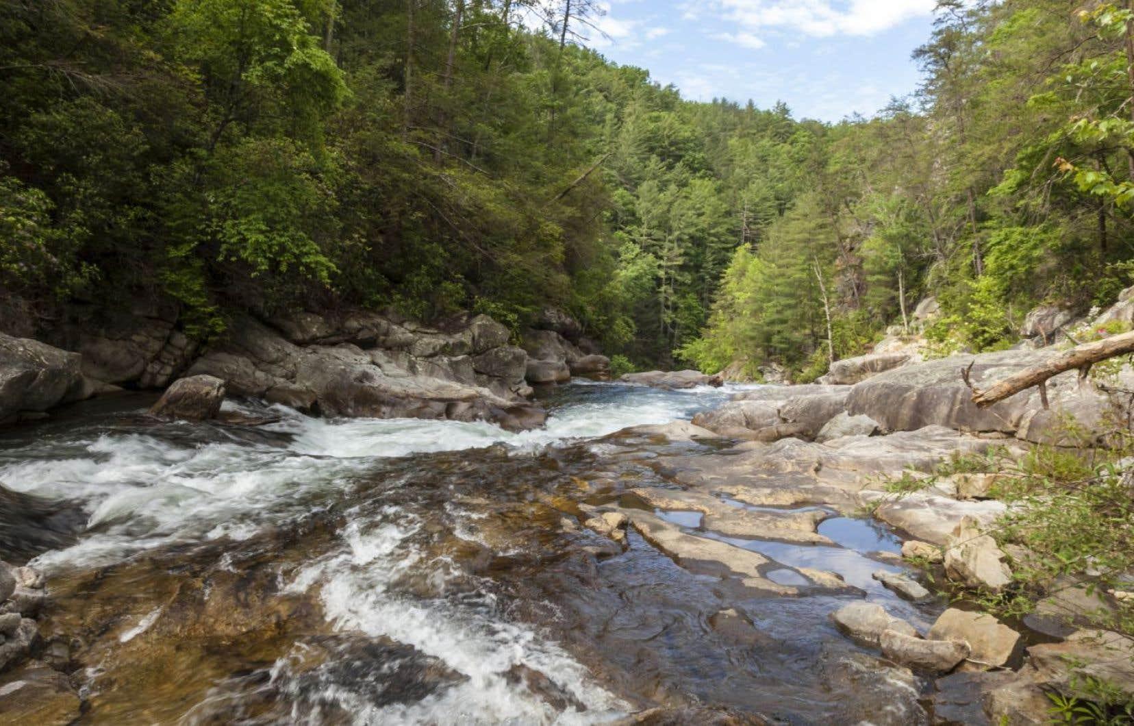 De frontière géographique, la rivière devient dans «Le chant de la Tamassee» un mur qui sépare les valeurs et les mentalités.