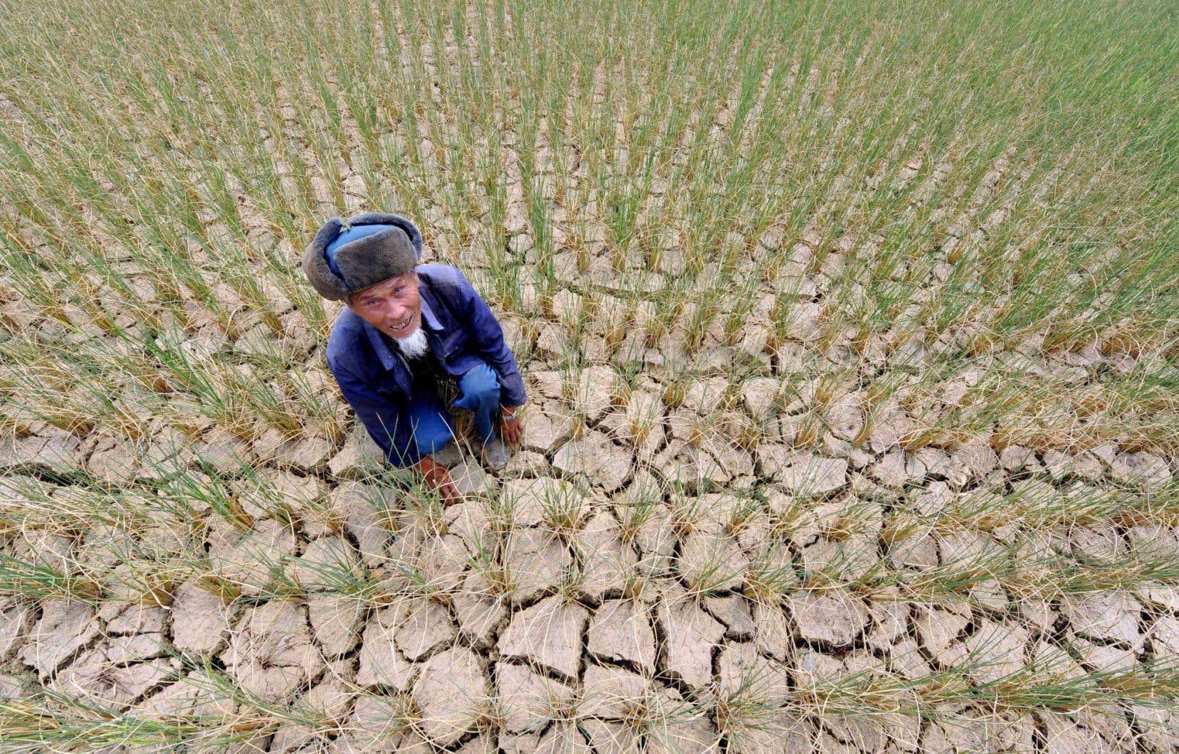Des économistes mettent en garde contre les conséquences du réchauffement sur l'activité économique et la croissance: dégâts liés à la recrudescence des intempéries, conséquence de la sécheresse sur l'agriculture,etc.<br />