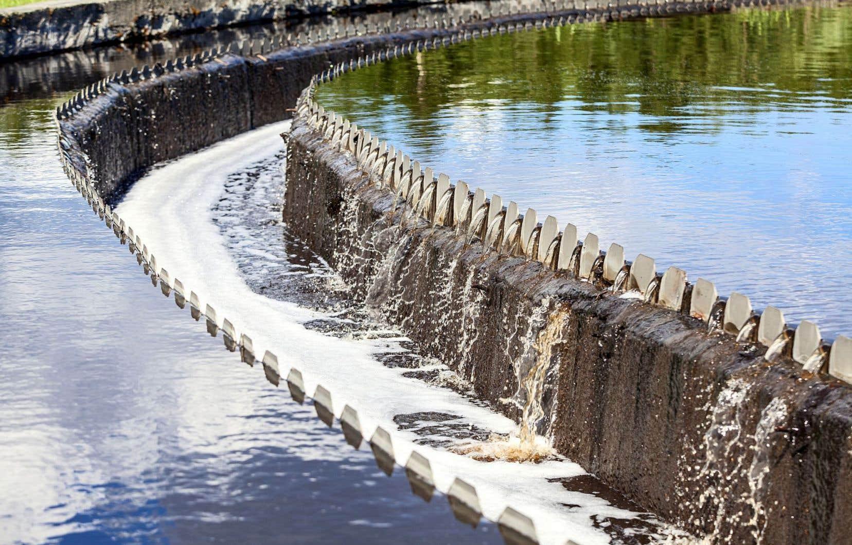 La Ville de Montréal prévoit la mise en service d'une unité d'ozonation dont l'objectif consiste à désinfecter, six mois par année, les eaux usées rejetées par l'agglomération dans le fleuve Saint-Laurent.