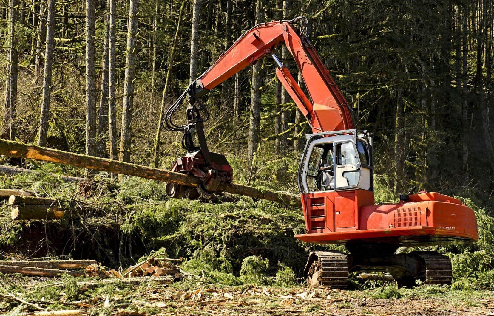 Fondaction a mis en place le Fonds Biomasse afin de soutenir les entreprises et les institutions désireuses de faire la transition de combustibles fossiles vers un combustible issu de la biomasse forestière.