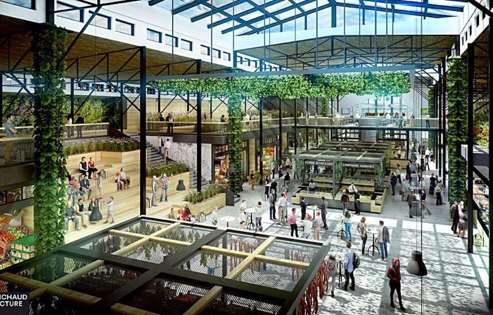 La surface du nouveau marché sera trois fois plus grande que celle du Marché du Vieux-Port.