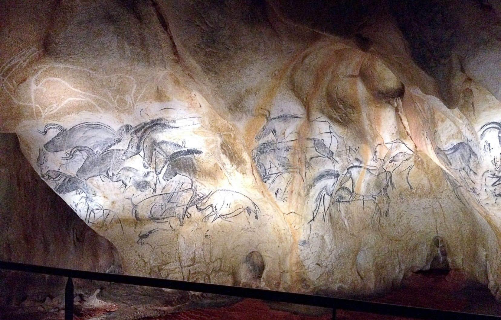 Les experts pensent que les Aurignaciens vouaient une sorte de vénération aux animaux représentés dans la grotte.
