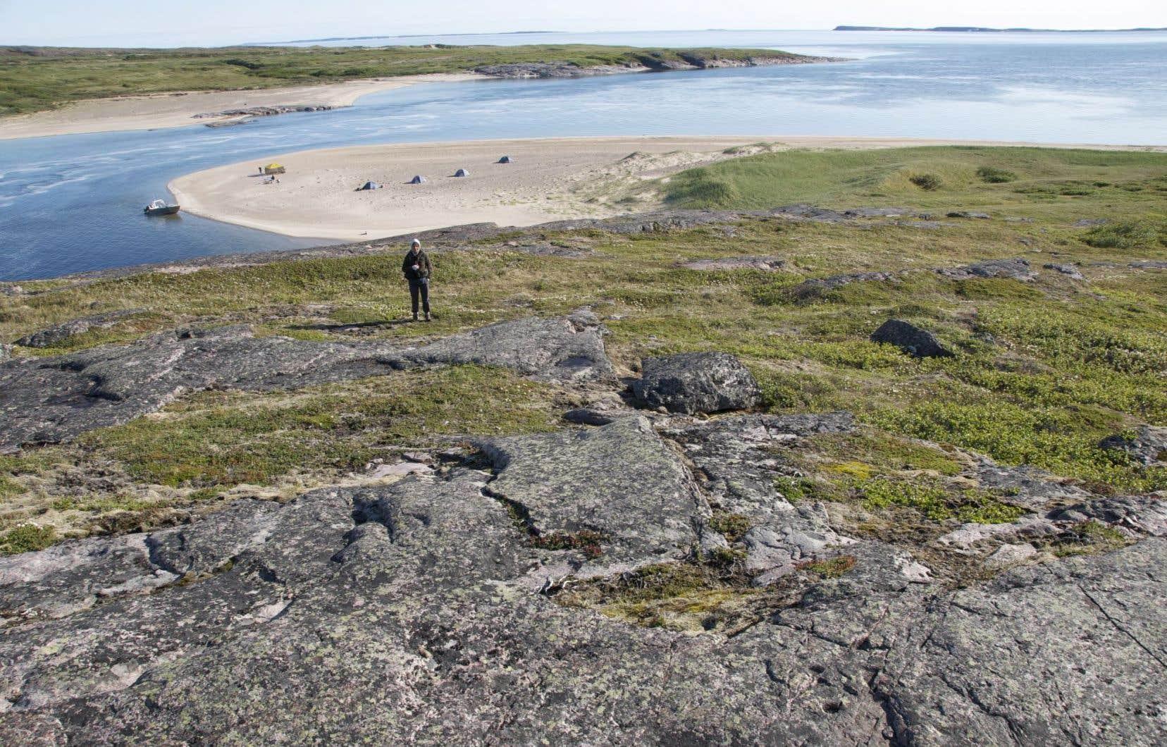 La découverte a été faite au Nunavik, dans le nord du Québec.