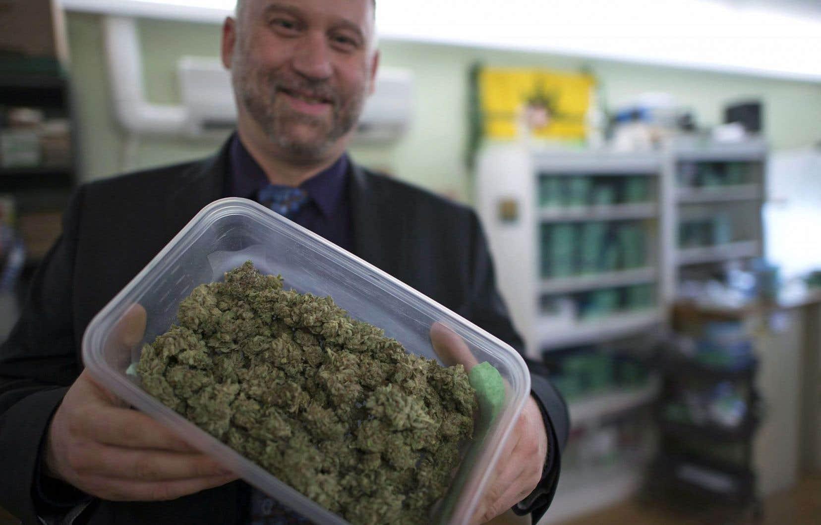 Dana Larsen, qui gère un dispensaire en Colombie-Britannique, vient d'être arrêté à Calgary lors d'un événement public pro-légalisation parce qu'il avait dans sa main… six semences de cannabis.