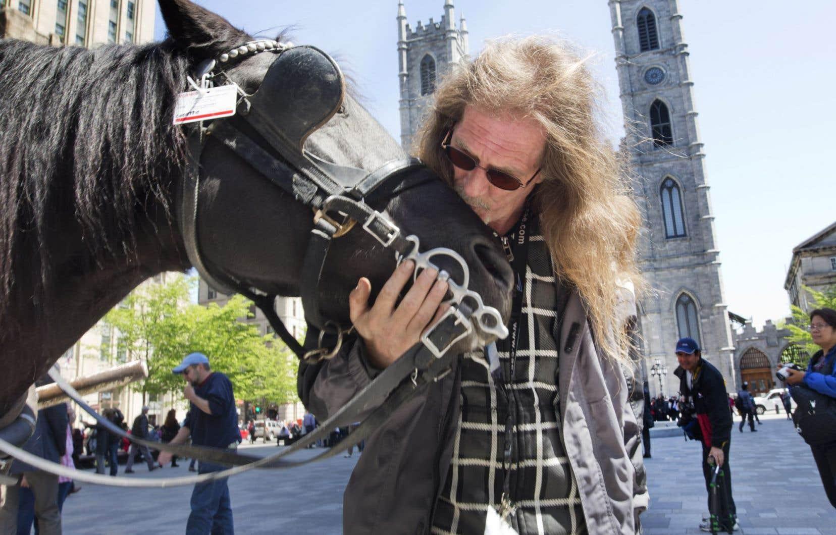 Depuis 32ans, Raymond, photographié avec Anastasia, arpente les rues de Montréal en calèche.