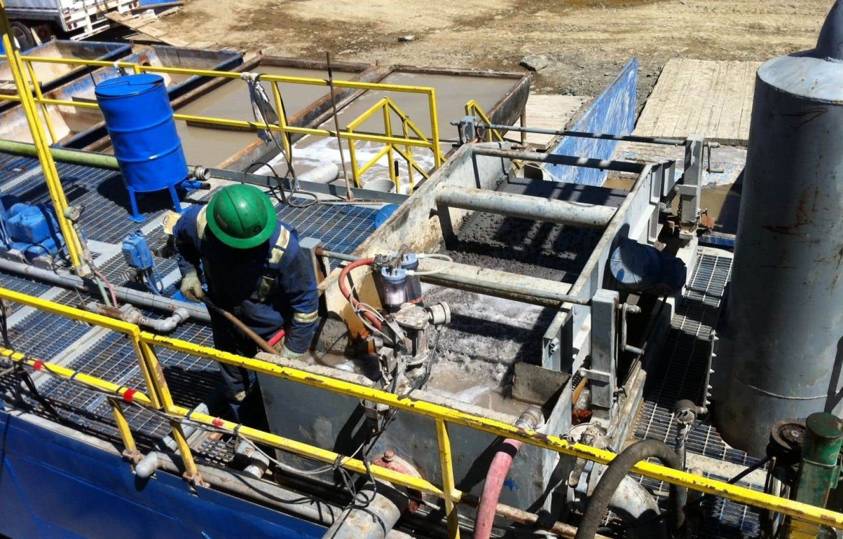 Le principal actif de Junex est le projet pétrolier Galt, situé à 20 km de Gaspé. L'entreprise a fait faire une estimation des réserves, lesquelles seraient de 557millions de barils de pétrole, selon Netherland, Sewell Associates.