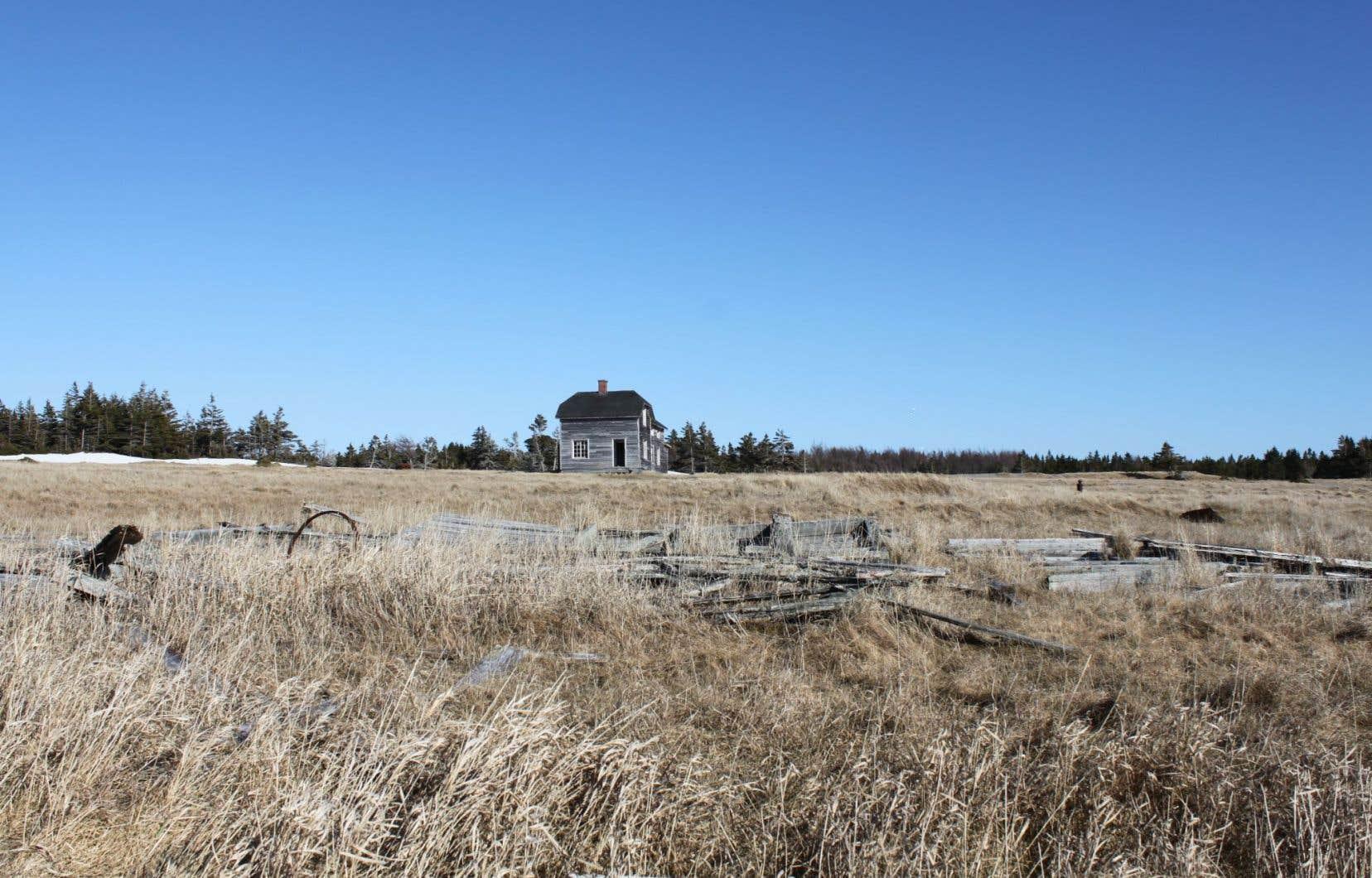 Pétrolia espère d'ailleurs toujours que les forages prévus en 2016 pourront être réalisés.