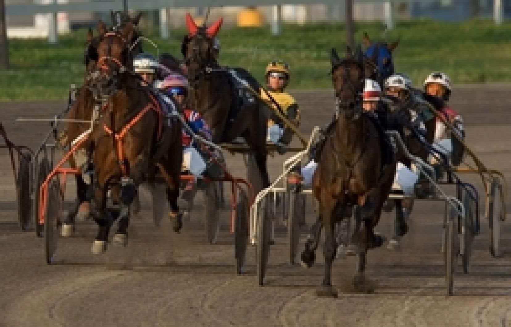 C'est à Montréal que se tiennent 60 % de toutes les courses de chevaux au Québec.