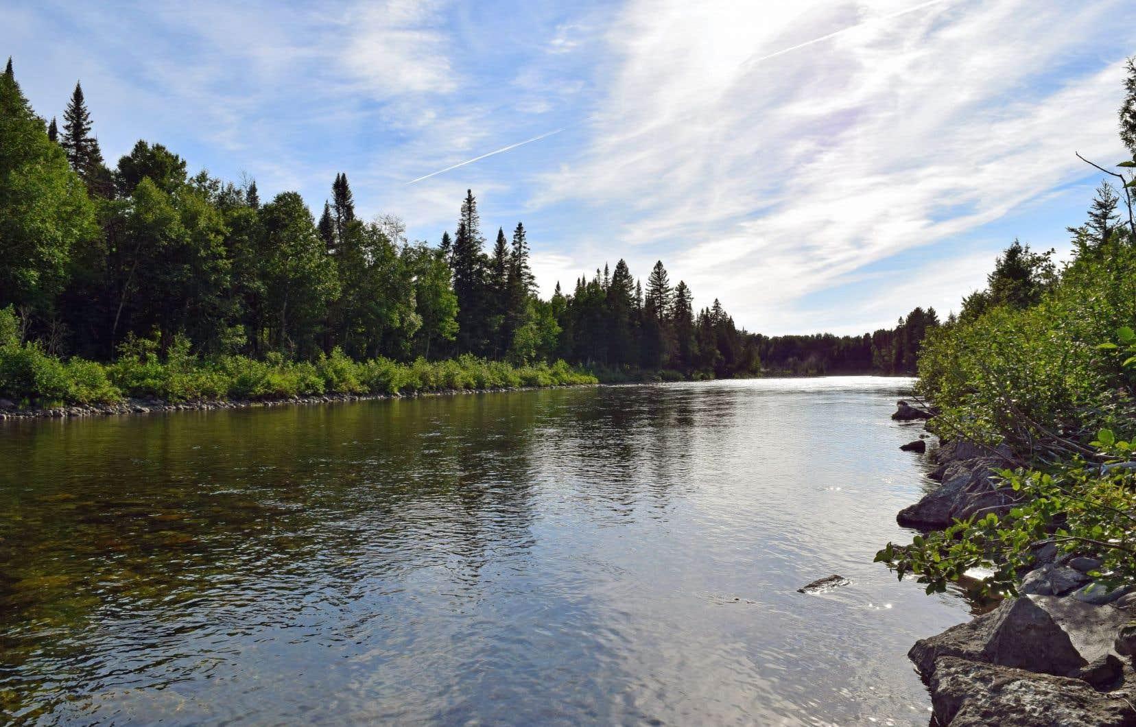 L'étendue des permis d'exploration pétrolière et gazière en vigueur au Québec est telle qu'elle recouvre même le territoire de quatre réserves fauniques, révélait cette semaine «Le Devoir». Ici, la réserve des Chic-Chocs, qui s'étend aux limites du parc national de la Gaspésie.