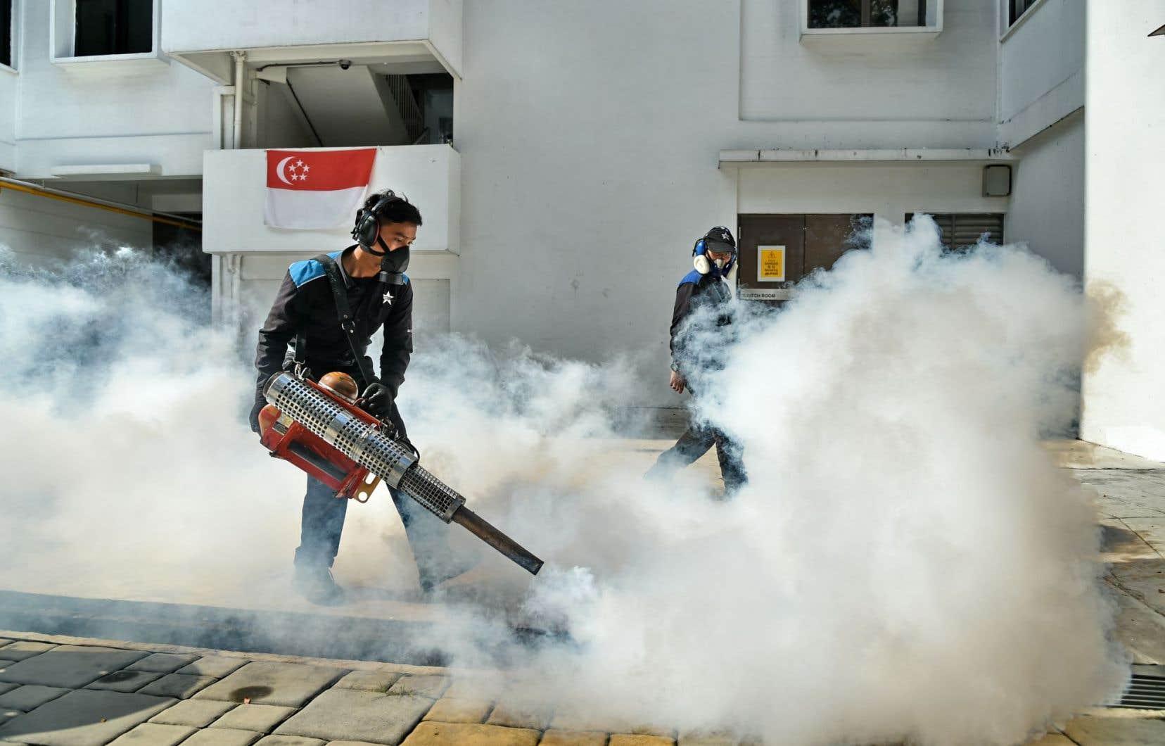 Depuis que l'étude a été écrite, Singapour a rapporté au moins une centaine de cas où le virus a été transmis localement.