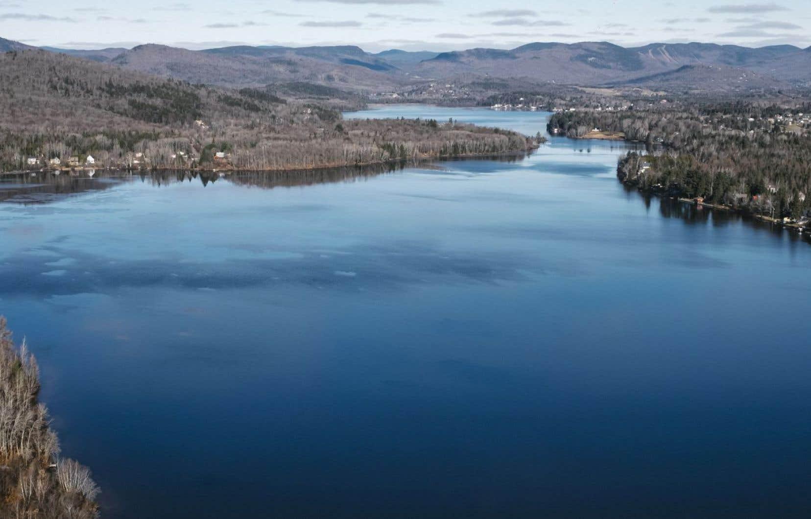 Un projet de 85 maisons et la destruction d'un boisé ont pour l'instant été autorisés par la Ville de Québec près du Lac Saint-Charles.