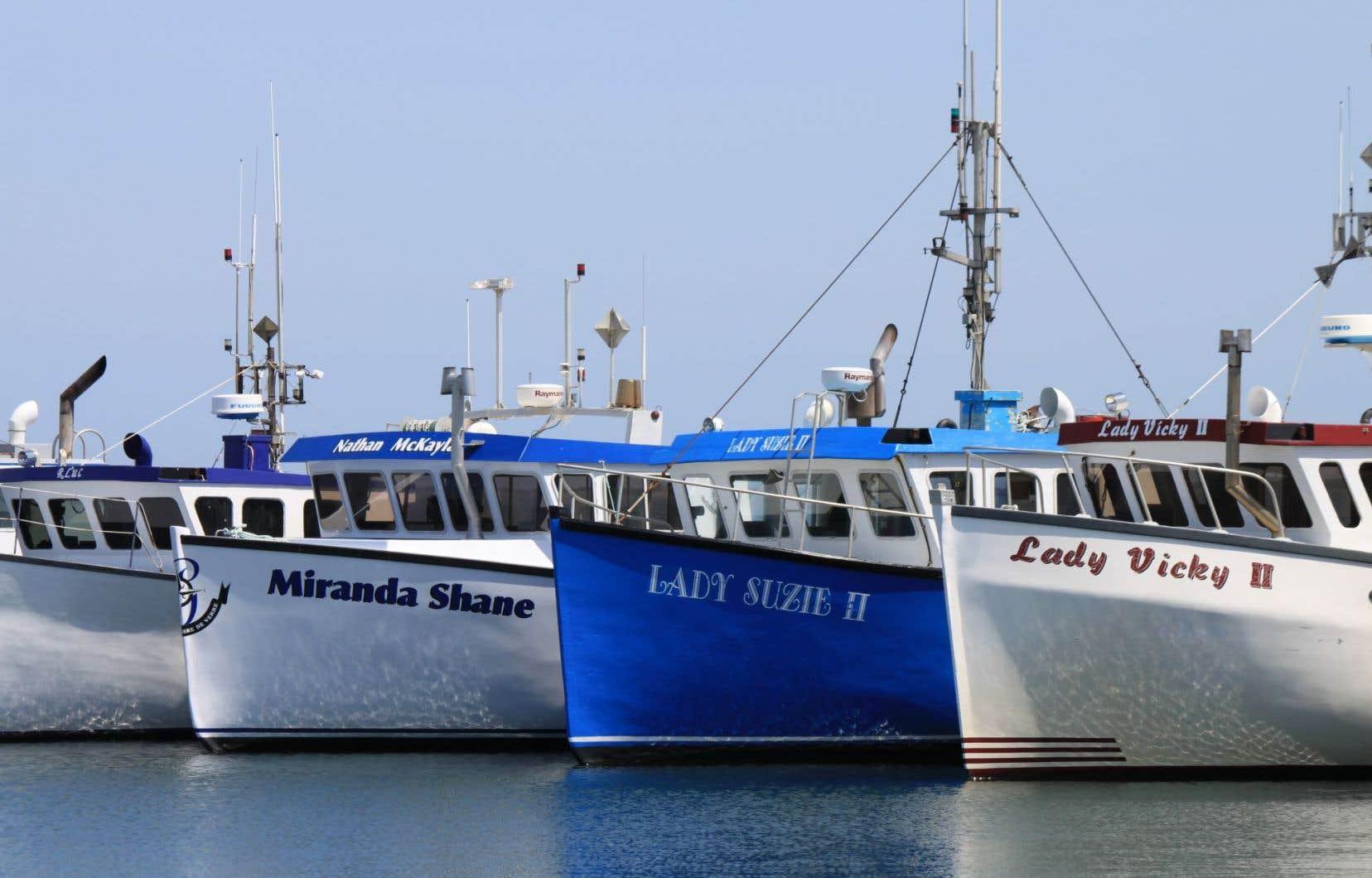 Pêches et Océans dispose de plans de gestion intégrée des pêches pour 110 des 154 principaux stocks de poissons du Canada, mais plusieurs sont désuets ou comportent des objectifs vagues, note le commissaire.