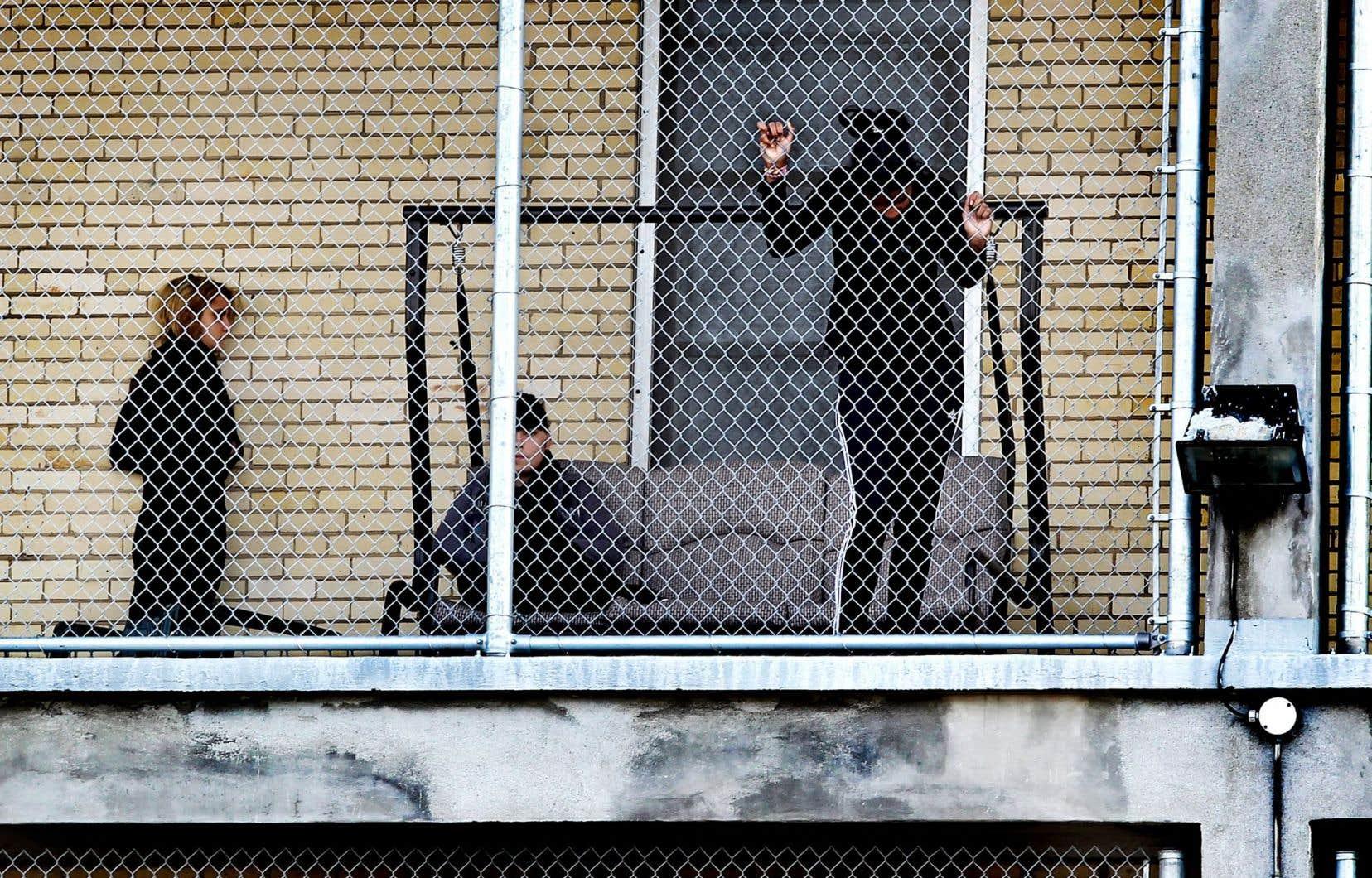 L'Ordre des criminologues du Québec compte 835 membres, dont 80% sont des criminologues œuvrant dans les centres jeunesse.