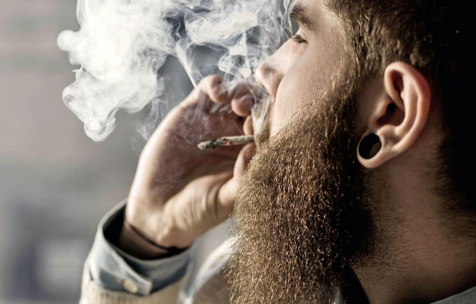 Dans la catégorie des 15 à 24 ans, ce sont près de 4 jeunes sur 10 qui affirment avoir consommé du cannabis dans la dernière année. L'usage diminue avec l'âge.
