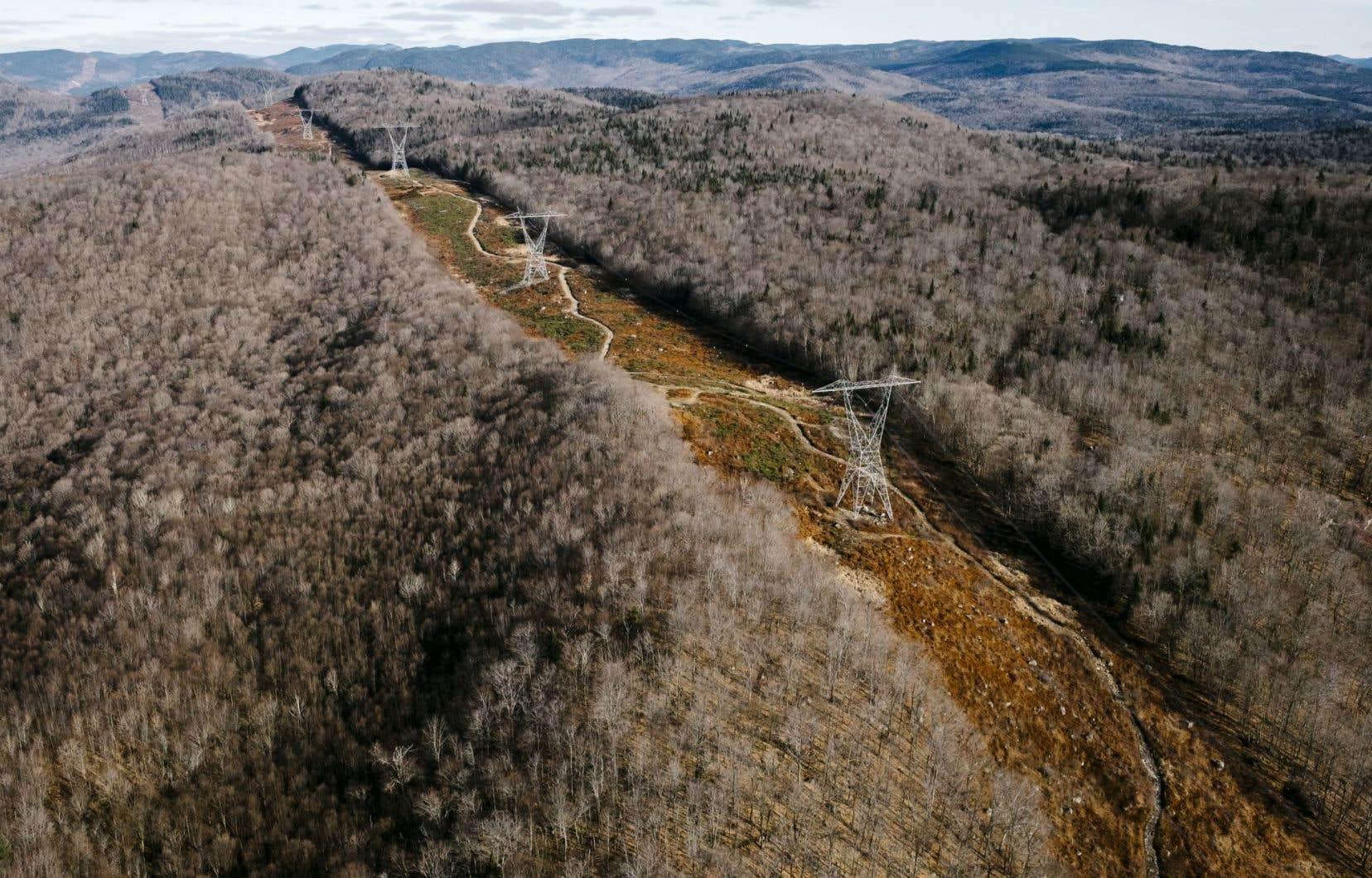Un porte-parole d'Hydro-Québec souligne que la largeur de la bande de terre qui sera entièrement déboisée en plein cœur de l'un des rares territoires naturels protégés en Estrie a été réduite.
