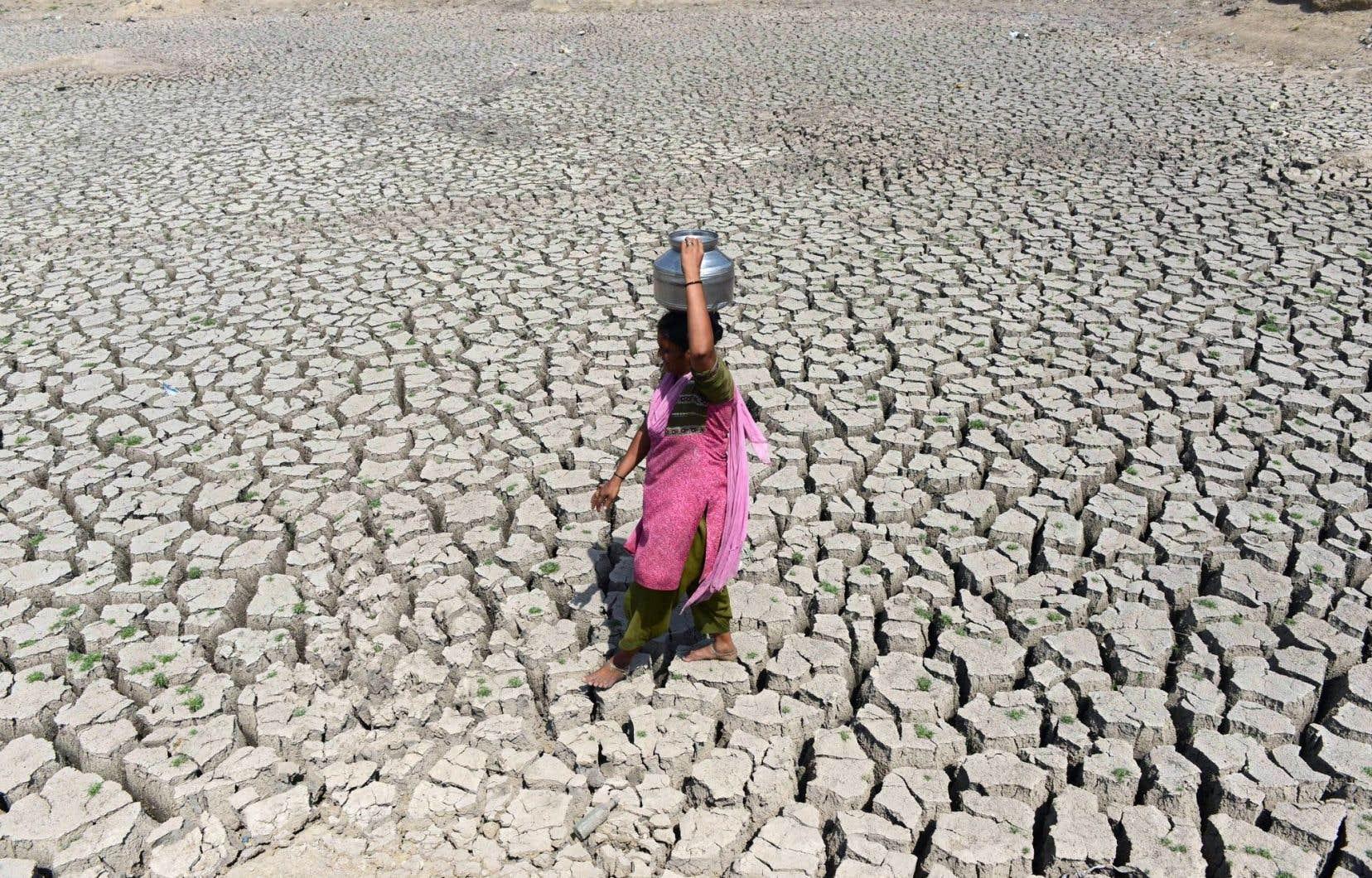 Une femme marche sur le lac desséché Chandola, en Inde, pour aller chercher de l'eau dans la ville d'Ahmedabad, en mai 2016. L'Inde a fait face à sa pire sécheresse depuis des décennies. Environ 330 millions de personnes, soit un quart de la population, ont souffert du manque d'eau après deux semaines de mousson.