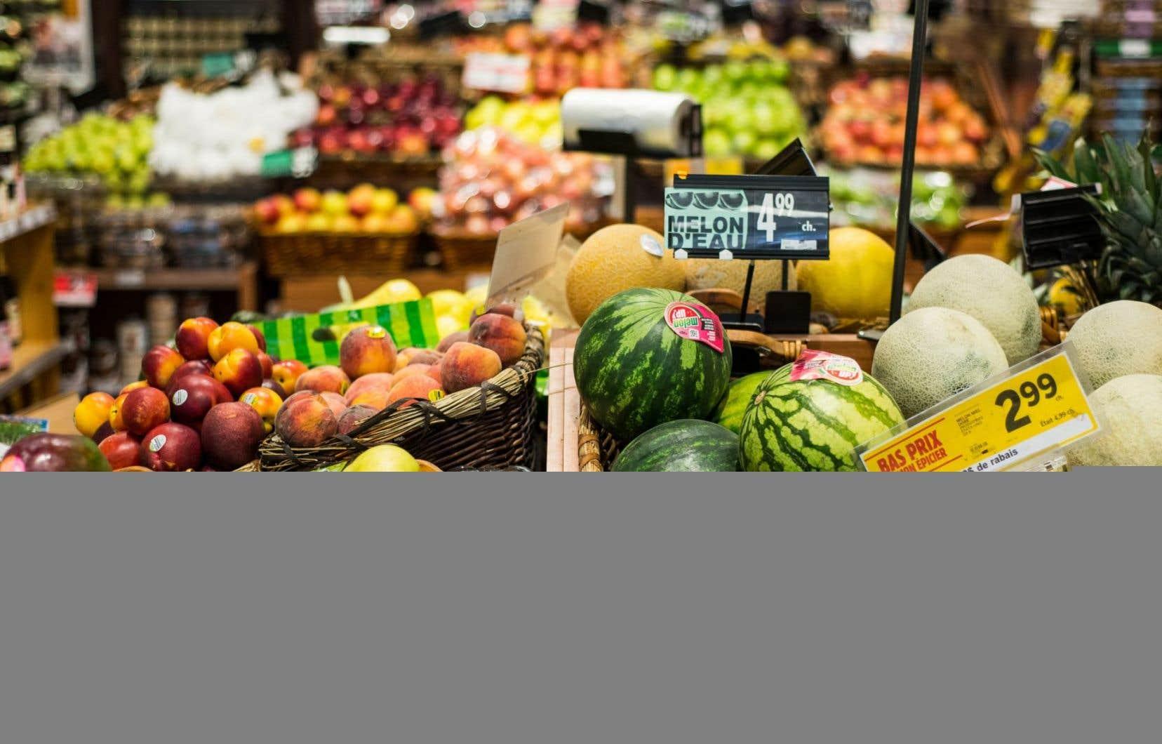 Près de 1,3 milliard de tonnes de nourriture sont jetées chaque année dans les pays développés.