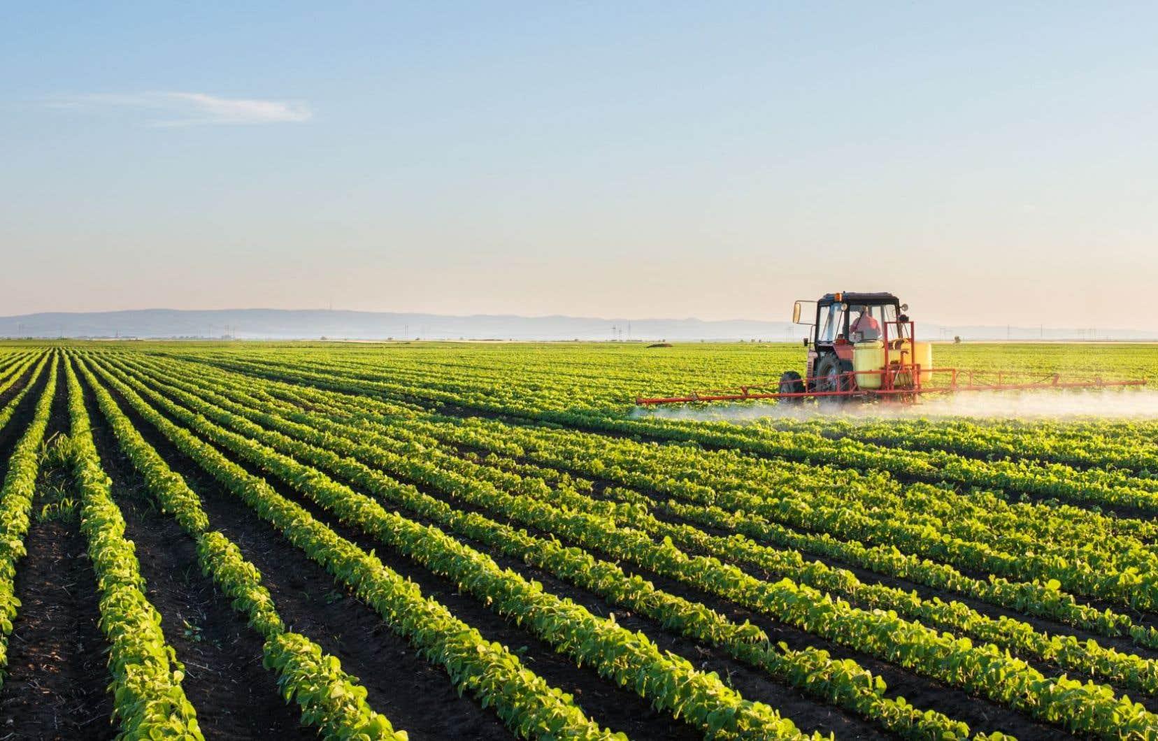 De 250 000 tonnes de maïs produites au Québec en 1973, on est passé aujourd'hui à 4 millions de tonnes.