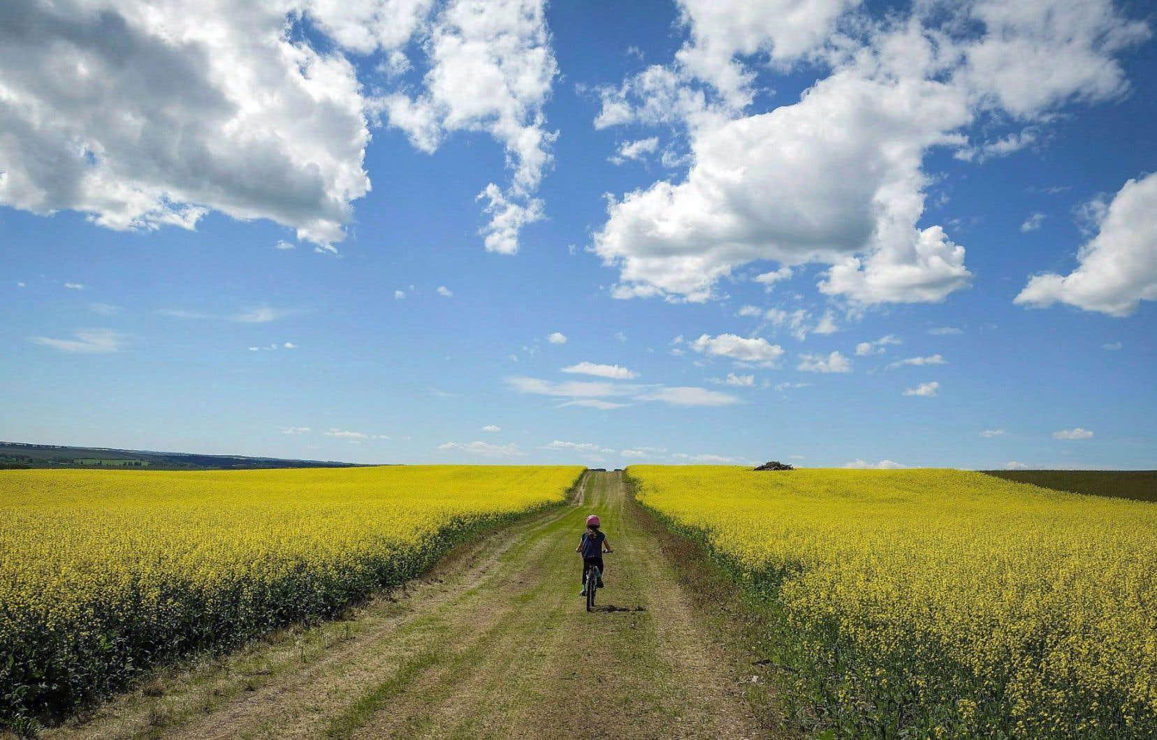 Le plan canadien visant à atteindre 80% de réduction de GES en 2050 devrait être dévoilé sous peu.