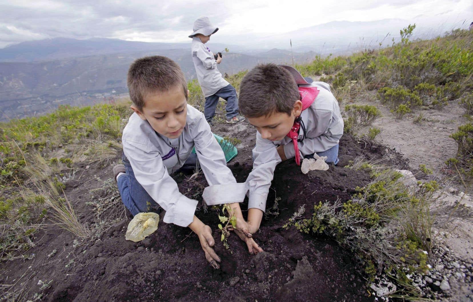 Des enfants équatoriens plantent un arbre sur la montagne Catequilla dans la zone appelée la moitié du monde où la ligne équatoriale passe.