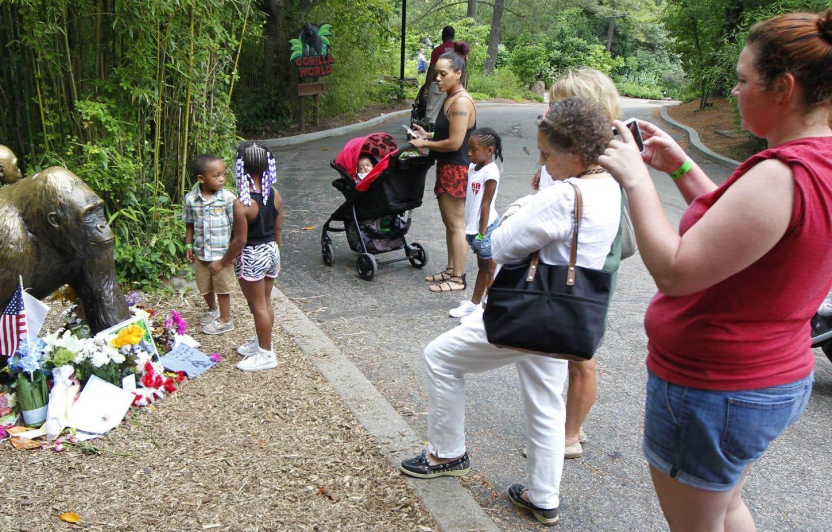Une statue a été dressée à la sortie du zoo de Cincinnati pour commémorer la mort du gorille Harambe, abattu le 2 juin dernier.