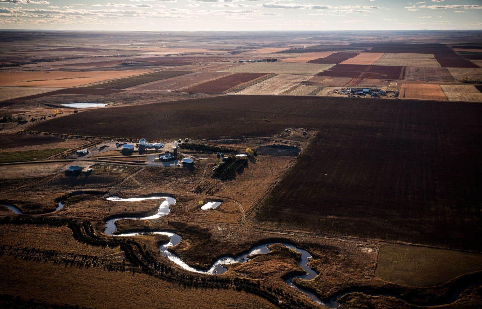 Le pipeline Keystone XL, s'il devait se concrétiser, traverserait ces terres du Dakota du Sud, au sud de Pierre.